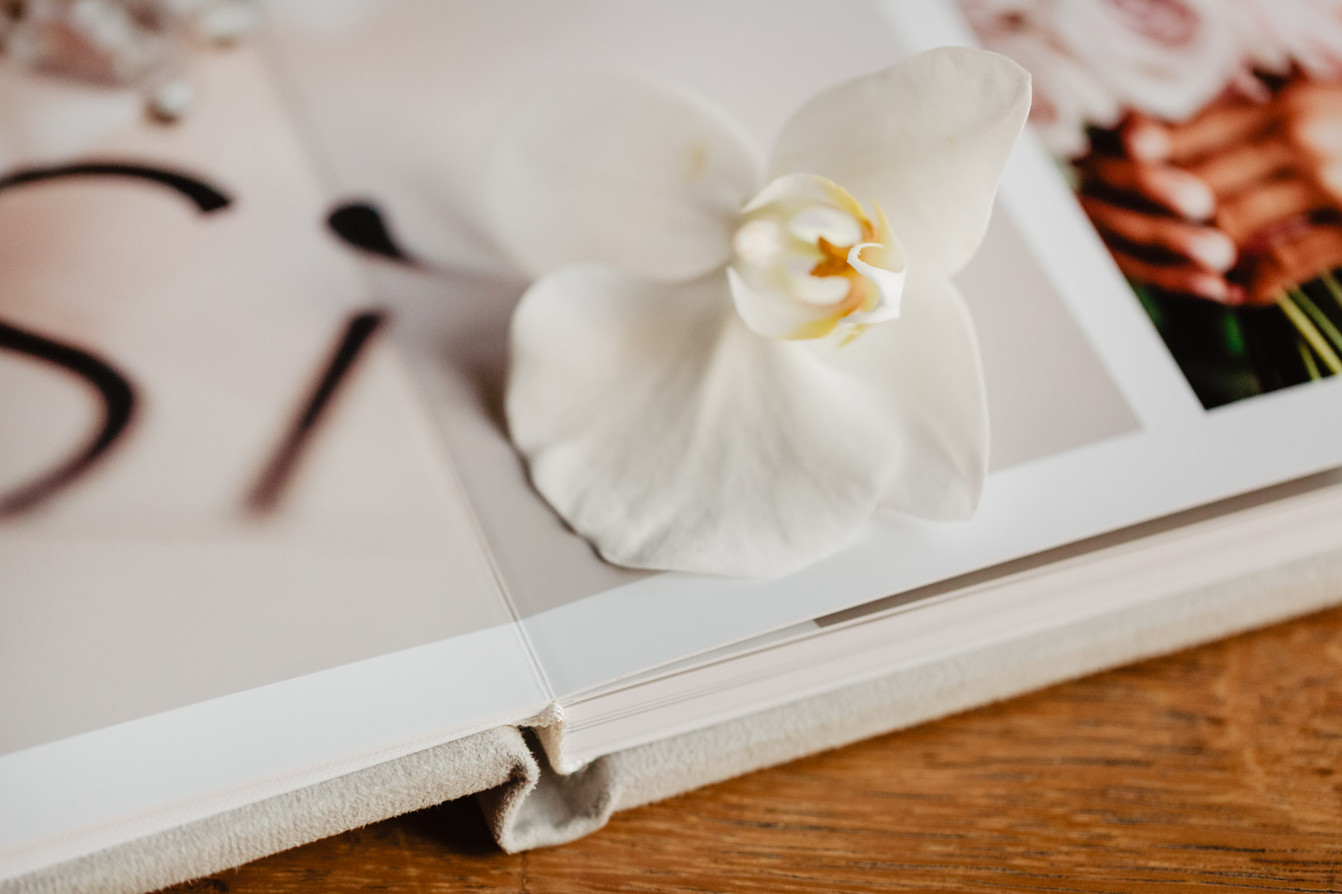 Complete Box (fotoalbum plus pendrive) | przykłady